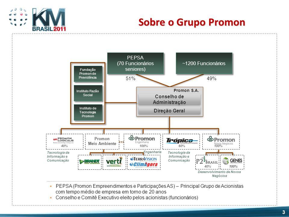 Sobre o Grupo Promon PEPSA (Promon Empreendimentos e Participações AS) – Principal Grupo de Acionistas com tempo médio de empresa em torno de 20 anos