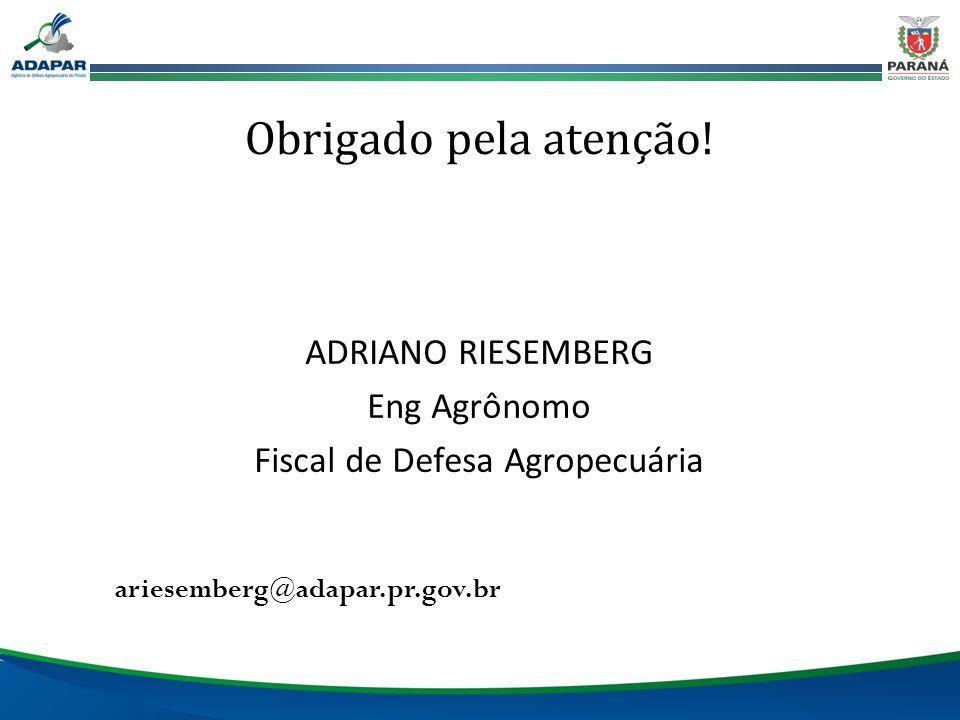 ariesemberg@adapar.pr.gov.br Obrigado pela atenção! ADRIANO RIESEMBERG Eng Agrônomo Fiscal de Defesa Agropecuária