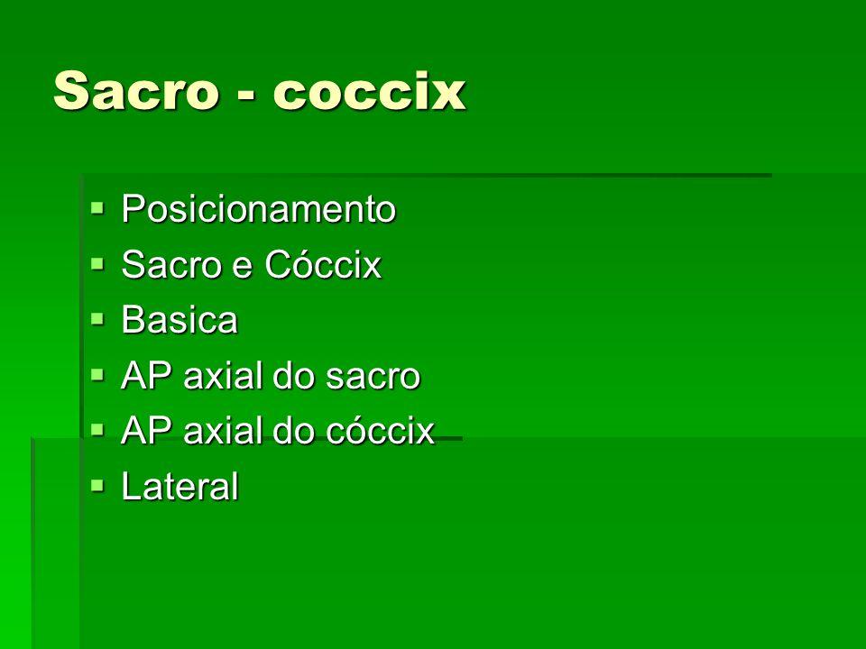 Sacro - coccix Posicionamento Posicionamento Sacro e Cóccix Sacro e Cóccix Basica Basica AP axial do sacro AP axial do sacro AP axial do cóccix AP axi