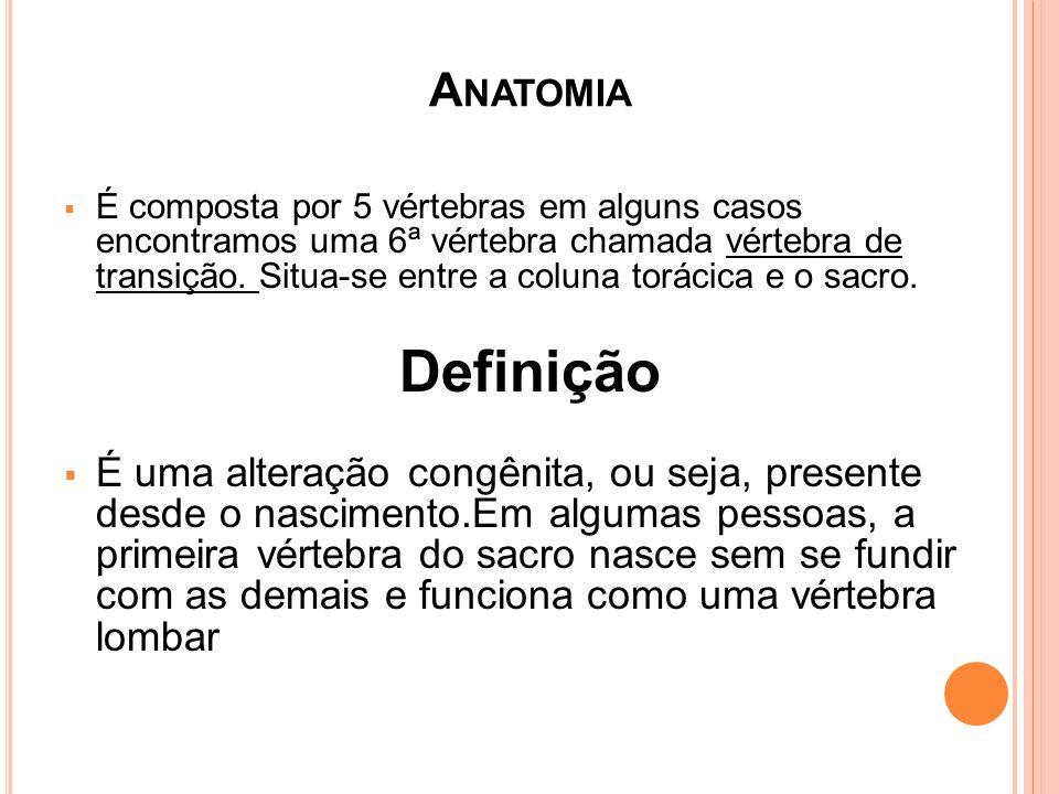 A NATOMIA É composta por 5 vértebras em alguns casos encontramos uma 6ª vértebra chamada vértebra de transição. Situa-se entre a coluna torácica e o s