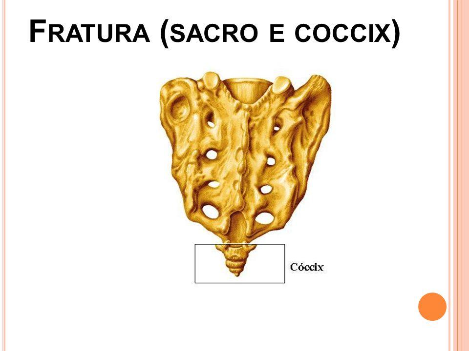 A NATOMIA Sacro:na infância é formado por 5 vértebras com tamanho decrescente,mas na idade adulta se apresenta fundidas, Entre as vértebras fundidas não existem discos intervertebrais, tem formato triangular de ápice inferior.