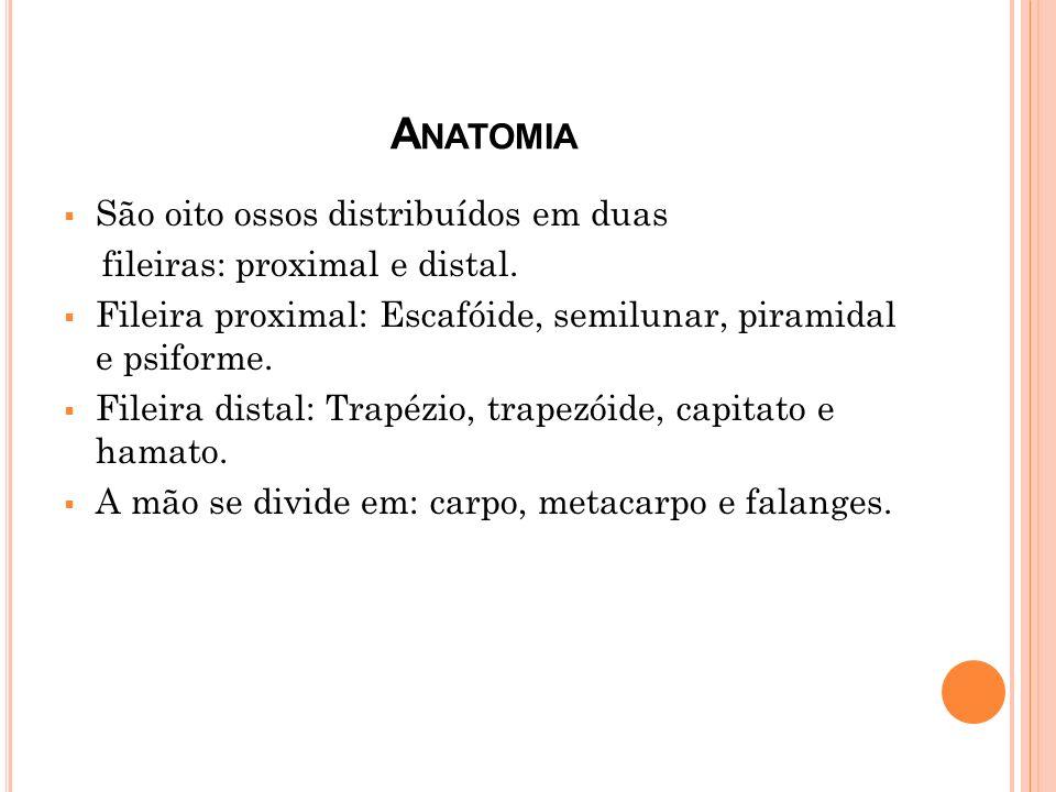 A NATOMIA São oito ossos distribuídos em duas fileiras: proximal e distal. Fileira proximal: Escafóide, semilunar, piramidal e psiforme. Fileira dista