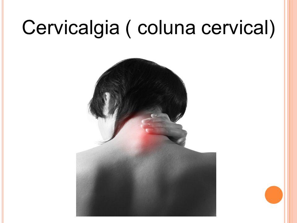 A NATOMIA A coluna cervical é formada por sete vértebras C1 à C7.