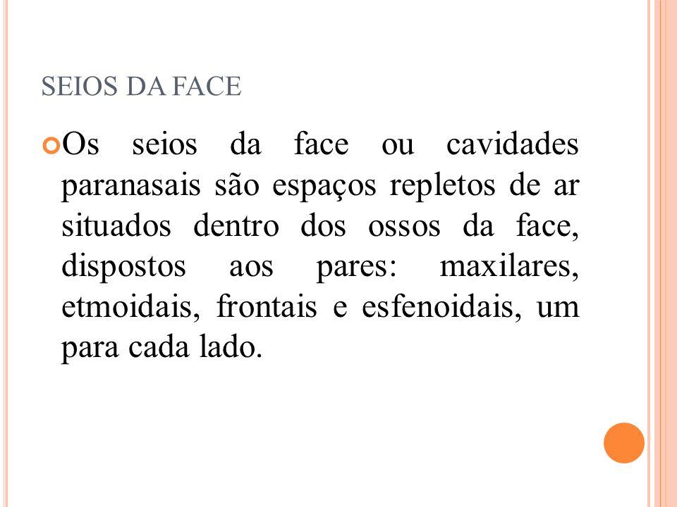 SEIOS DA FACE Os seios da face ou cavidades paranasais são espaços repletos de ar situados dentro dos ossos da face, dispostos aos pares: maxilares, e