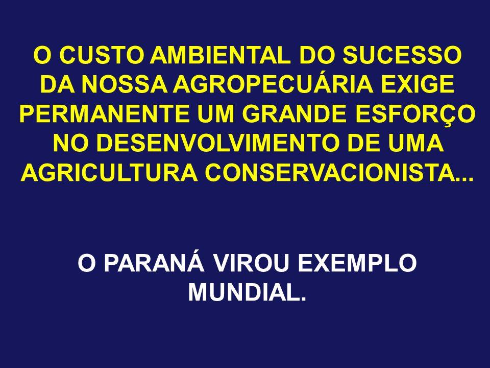 O CUSTO AMBIENTAL DO SUCESSO DA NOSSA AGROPECUÁRIA EXIGE PERMANENTE UM GRANDE ESFORÇO NO DESENVOLVIMENTO DE UMA AGRICULTURA CONSERVACIONISTA... O PARA
