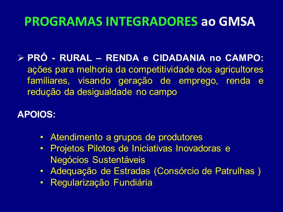 PROGRAMAS INTEGRADORES ao GMSA PRÓ - RURAL – RENDA e CIDADANIA no CAMPO: ações para melhoria da competitividade dos agricultores familiares, visando g