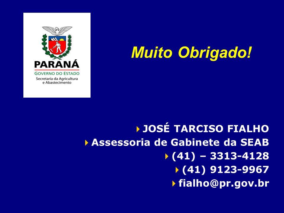 Muito Obrigado! JOSÉ TARCISO FIALHO Assessoria de Gabinete da SEAB (41) – 3313-4128 (41) 9123-9967 fialho@pr.gov.br