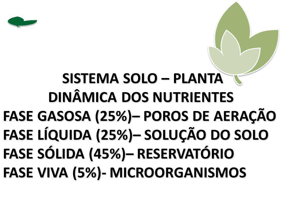 SISTEMA SOLO – PLANTA SISTEMA SOLO – PLANTA DINÂMICA DOS NUTRIENTES FASE GASOSA (25%)– POROS DE AERAÇÃO FASE LÍQUIDA (25%)– SOLUÇÃO DO SOLO FASE SÓLID
