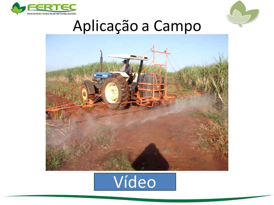 Aplicação a Campo Vídeo