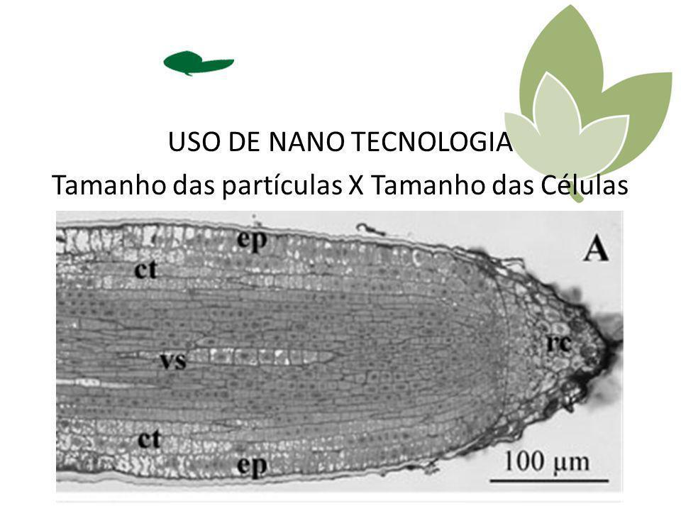 USO DE NANO TECNOLOGIA Tamanho das partículas X Tamanho das Células 2.000 a 5.000 nm MgO 100 nm H ³ BO ³ 160 nm MnCO³ 240 nm ZnO 280 nm CaCO³ / CaO 409 nm