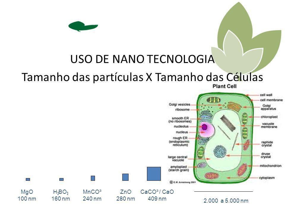 USO DE NANO TECNOLOGIA Tamanho das partículas X Tamanho das Células 2.000 a 5.000 nm MgO 100 nm H ³ BO ³ 160 nm MnCO³ 240 nm ZnO 280 nm CaCO³ / CaO 40