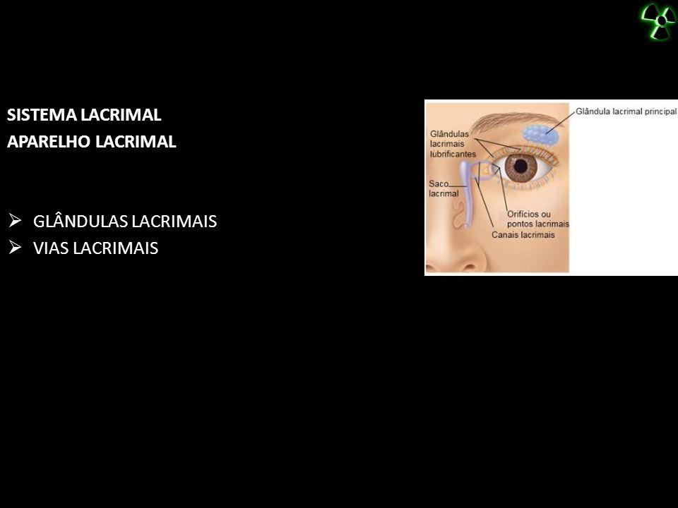 SISTEMA LACRIMAL APARELHO LACRIMAL GLÂNDULAS LACRIMAIS VIAS LACRIMAIS