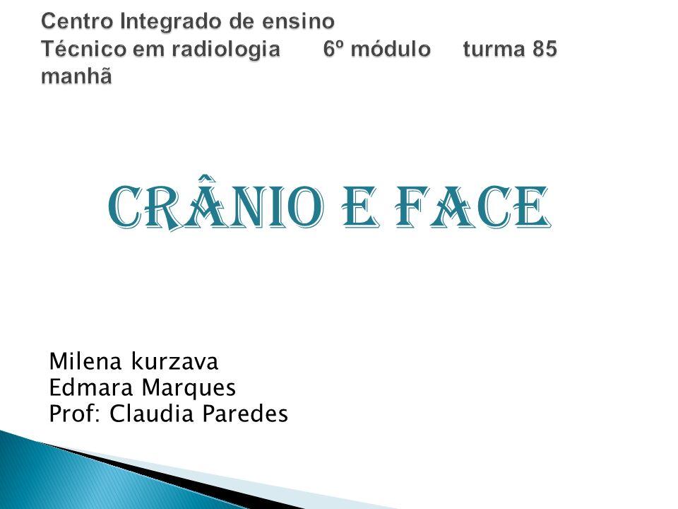 Crânio e Face Milena kurzava Edmara Marques Prof: Claudia Paredes