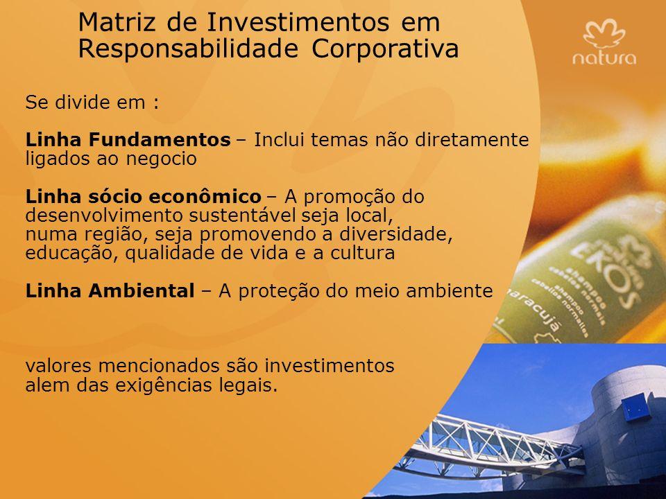 Matriz de Investimentos em Responsabilidade Corporativa Se divide em : Linha Fundamentos – Inclui temas não diretamente ligados ao negocio Linha sócio