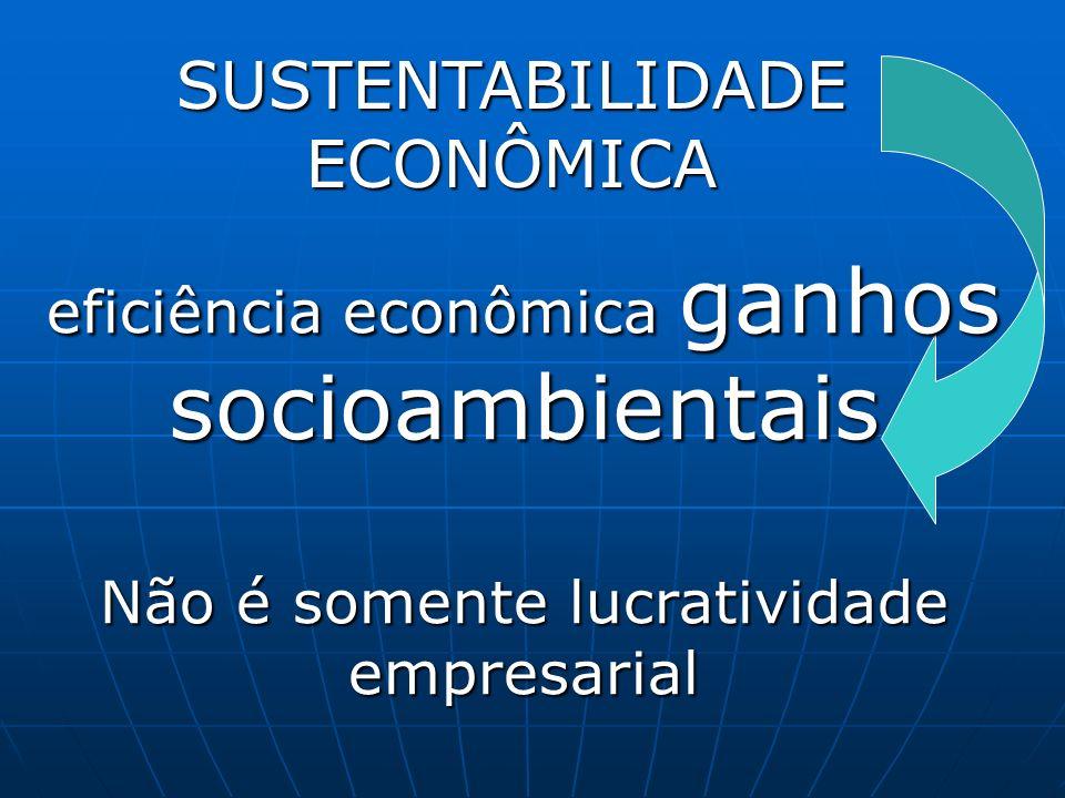 SUSTENTABILIDADE ECONÔMICA eficiência econômica ganhos socioambientais Não é somente lucratividade empresarial