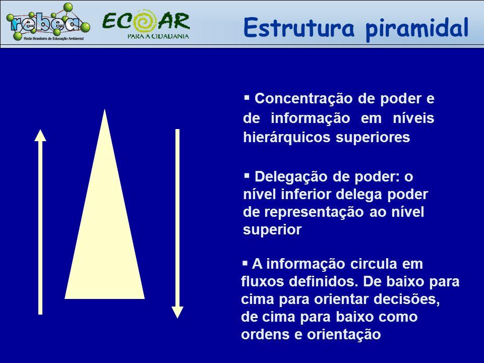 Concentração de poder e de informação em níveis hierárquicos superiores Delegação de poder: o nível inferior delega poder de representação ao nível su