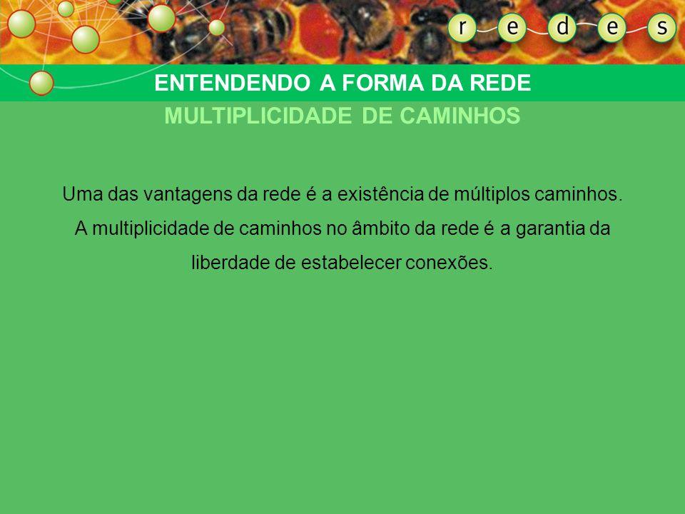 ENTENDENDO A FORMA DA REDE TRANSITIVIDADE
