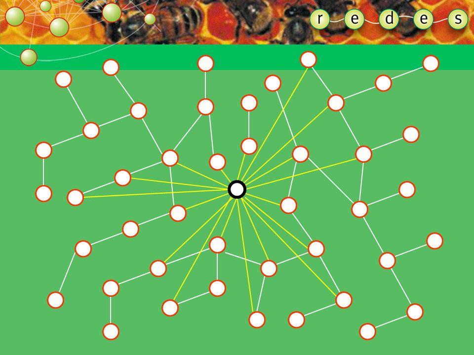 Alguns poucos indivíduos conectados podem conectar comunidades inteiras com o mundo exterior. Assim como os pontos-de-mil-linhas fazem nos sistemas-re