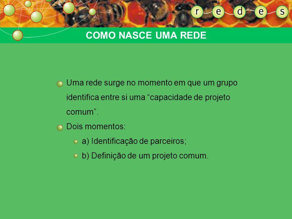 COMO CRIAR E ORGANIZAR UMA REDE