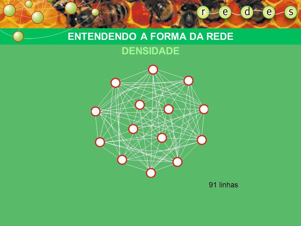 37 linhas ENTENDENDO A FORMA DA REDE DENSIDADE