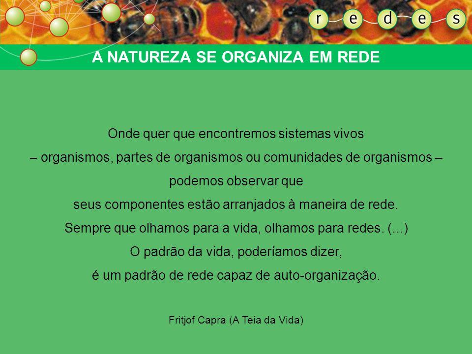 AS REDES DA SOCIEDADE CIVIL Mobilizações de Seattle, Praga, Gênova Fórum Social Mundial (Porto Alegre) A rede como estrutura de organização da ação de ONGs e movimentos sociais