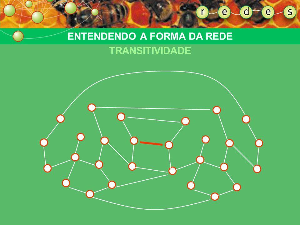 ENTENDENDO A FORMA DA REDE TRANSITIVIDADE Estabelecendo uma ponte: uma única conexão entre dois pontos liga, automaticamente, redes inteiras. Um nó da