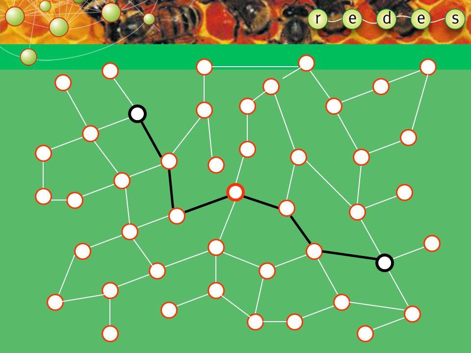 A extensão característica de caminho é o número médio de conexões necessárias entre um ponto e outro ponto qualquer da rede. Tal noção se refere à exi