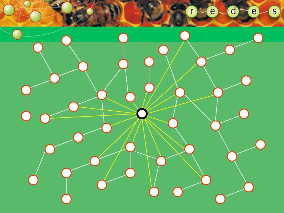ENTENDENDO A FORMA DA REDE PONTOS HIPERCONECTORES As múltiplas conexões de um ponto hiperconector servem de atalho para os demais pontos que compõem a