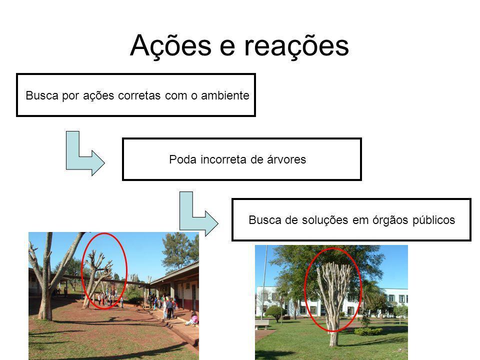 Busca por ações corretas com o ambiente Poda incorreta de árvores Busca de soluções em órgãos públicos Ações e reações