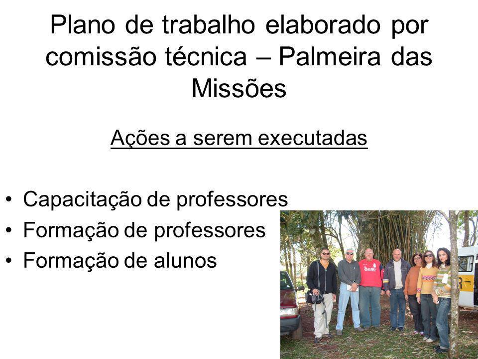 Plano de trabalho elaborado por comissão técnica – Palmeira das Missões Ações a serem executadas Capacitação de professores Formação de professores Fo