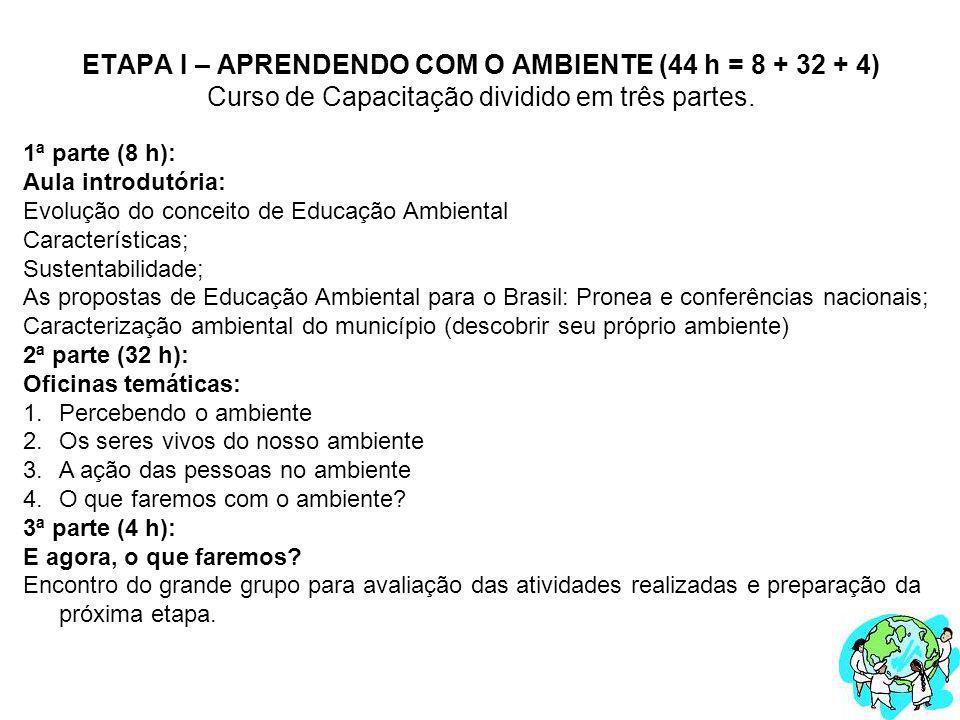 ETAPA I – APRENDENDO COM O AMBIENTE (44 h = 8 + 32 + 4) Curso de Capacitação dividido em três partes. 1ª parte (8 h): Aula introdutória: Evolução do c