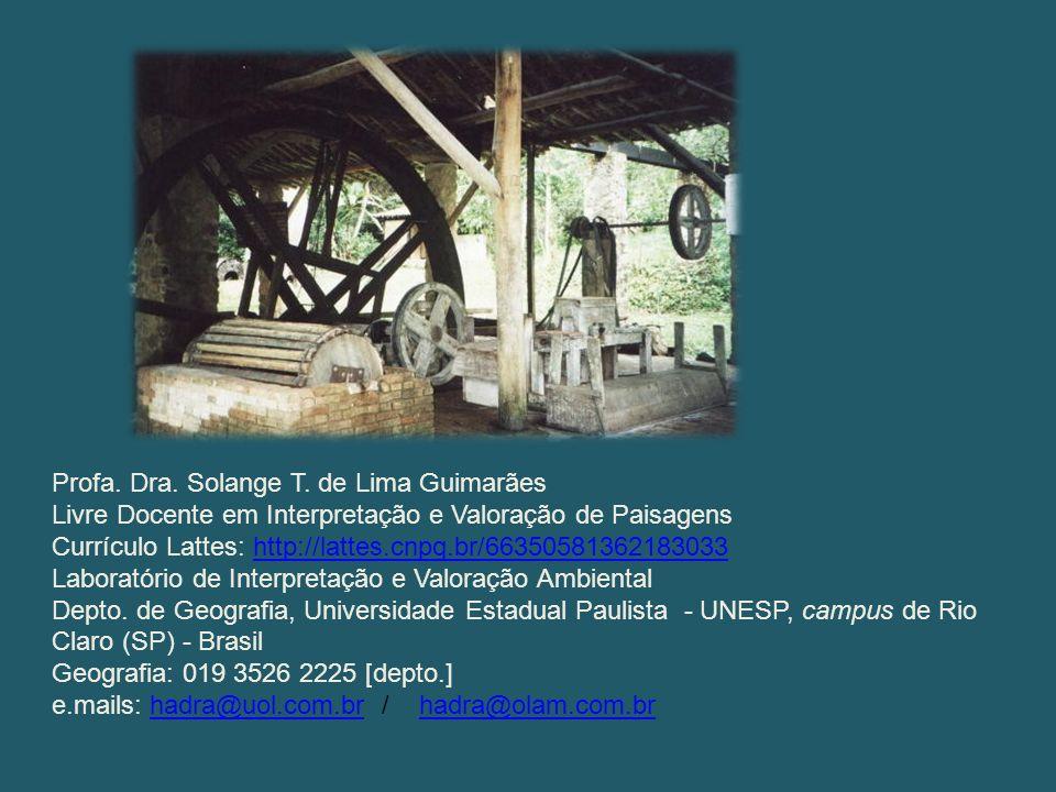 Profa. Dra. Solange T. de Lima Guimarães Livre Docente em Interpretação e Valoração de Paisagens Currículo Lattes: http://lattes.cnpq.br/6635058136218