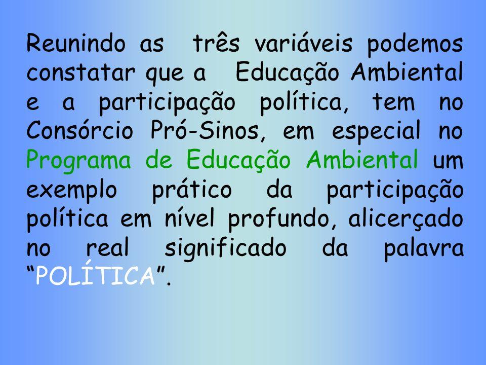 Reunindo as três variáveis podemos constatar que a Educação Ambiental e a participação política, tem no Consórcio Pró-Sinos, em especial no Programa d