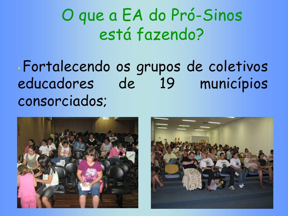 O que a EA do Pró-Sinos está fazendo? Fortalecendo os grupos de coletivos educadores de 19 municípios consorciados;