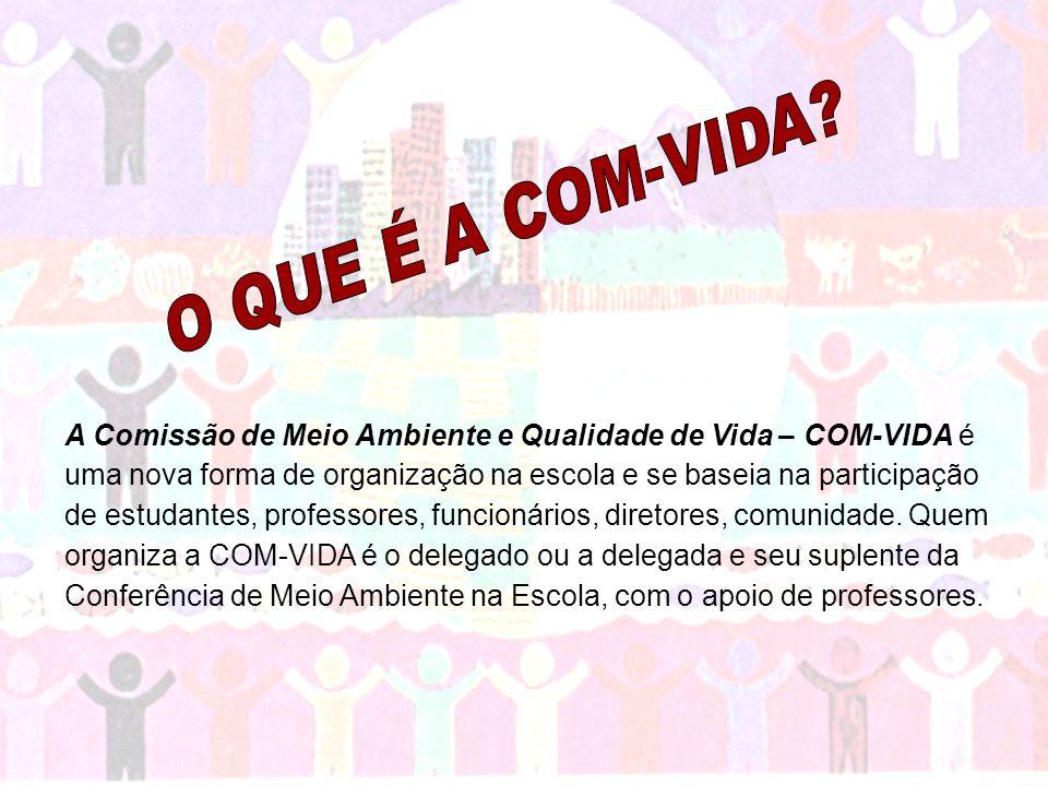 A COM-VIDA tem um grande objetivo para todo o Brasil: construir a Agenda 21 na Escola.