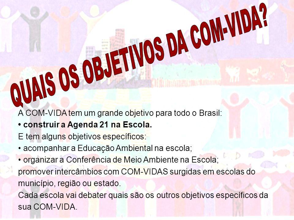 A COM-VIDA tem um grande objetivo para todo o Brasil: construir a Agenda 21 na Escola. E tem alguns objetivos específicos: acompanhar a Educação Ambie