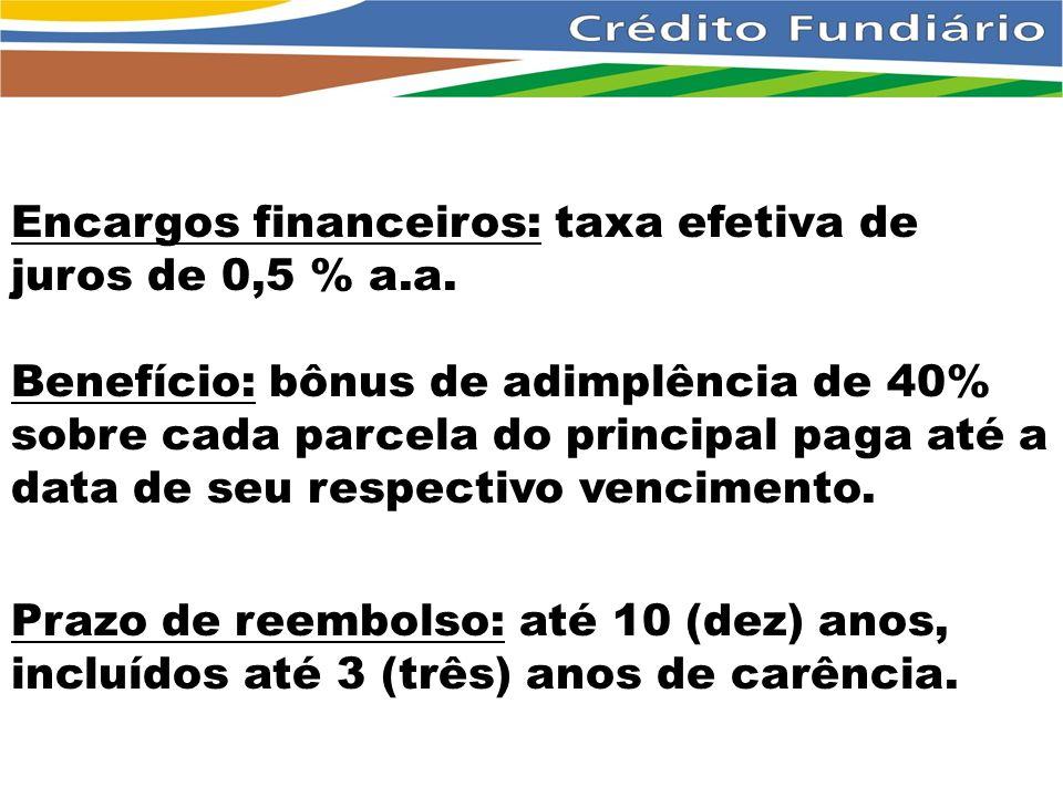 Encargos financeiros: taxa efetiva de juros de 0,5 % a.a.