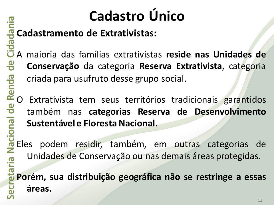 Secretaria Nacional de Renda de Cidadania Secretaria Nacional de Renda de Cidadania 12 Cadastro Único Cadastramento de Extrativistas: A maioria das fa