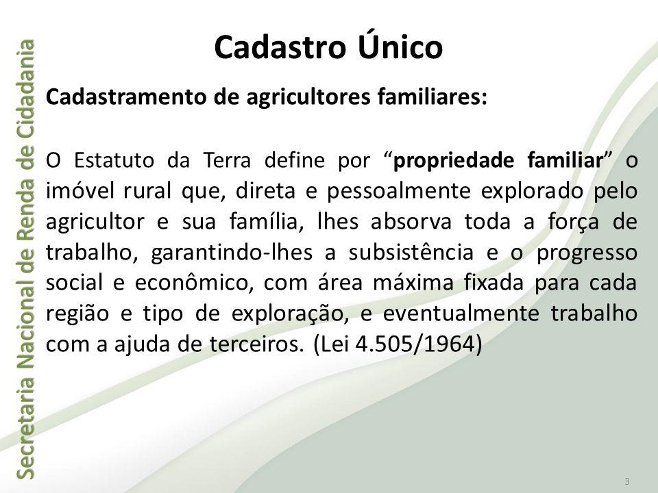 Secretaria Nacional de Renda de Cidadania Secretaria Nacional de Renda de Cidadania 3 Cadastro Único Cadastramento de agricultores familiares: O Estat