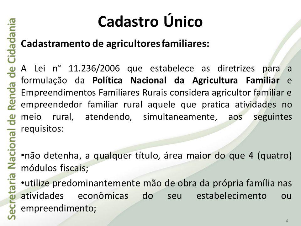 Secretaria Nacional de Renda de Cidadania Secretaria Nacional de Renda de Cidadania 4 Cadastro Único Cadastramento de agricultores familiares: A Lei n