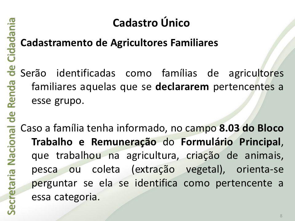 Secretaria Nacional de Renda de Cidadania Secretaria Nacional de Renda de Cidadania 8 Cadastramento de Agricultores Familiares Serão identificadas com