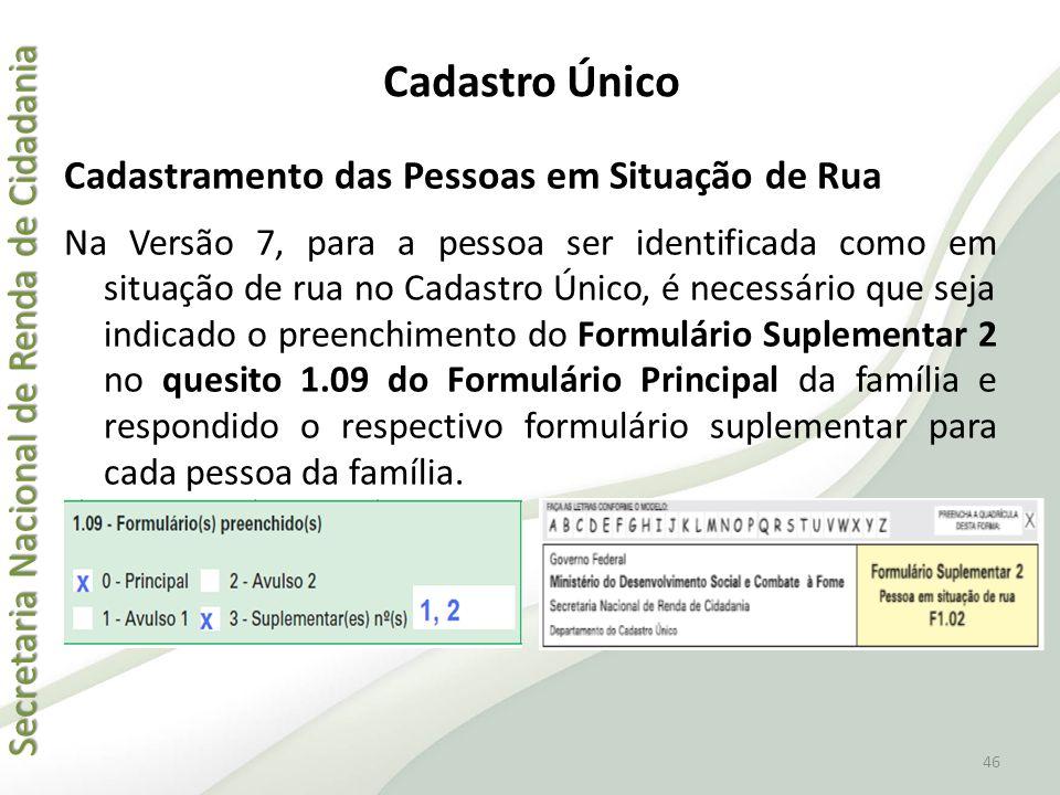 Secretaria Nacional de Renda de Cidadania Secretaria Nacional de Renda de Cidadania Cadastramento das Pessoas em Situação de Rua Na Versão 7, para a p