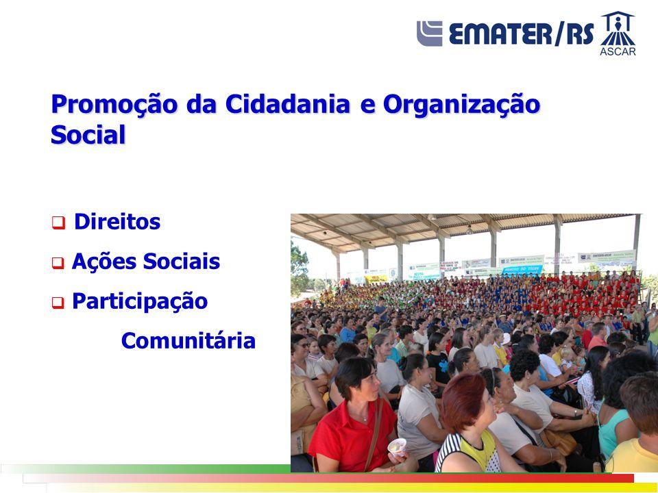 Promoção da Cidadania e Organização Social Direitos Ações Sociais Participação Comunitária