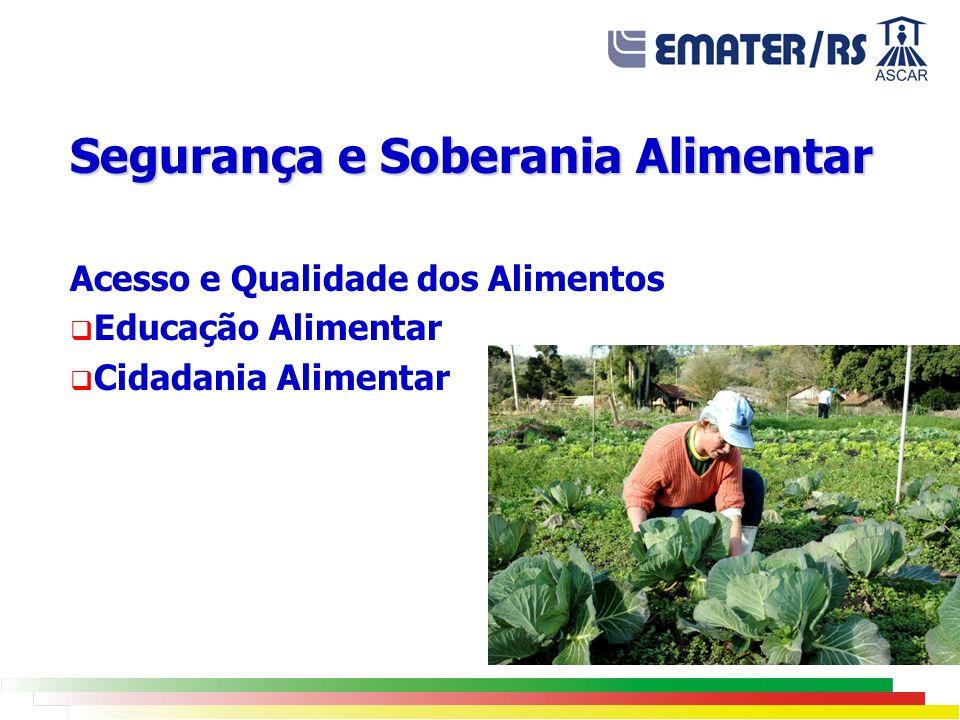 Segurança e Soberania Alimentar Acesso e Qualidade dos Alimentos Educação Alimentar Cidadania Alimentar