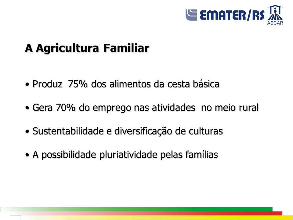 A Agricultura Familiar Produz 75% dos alimentos da cesta básica Produz 75% dos alimentos da cesta básica Gera 70% do emprego nas atividades no meio ru