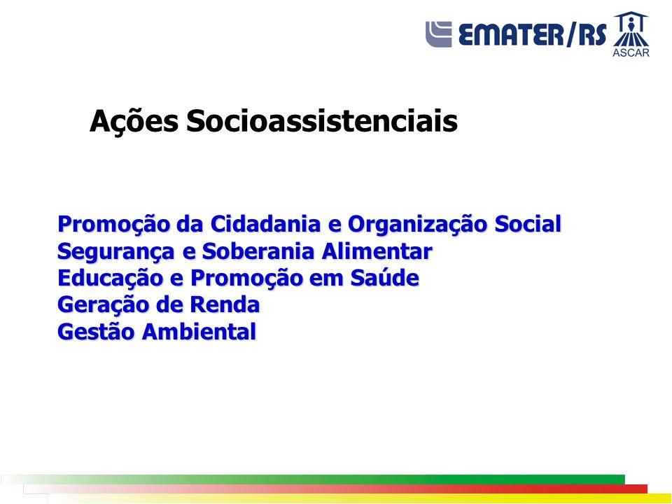 Promoção da Cidadania e Organização Social Segurança e Soberania Alimentar Educação e Promoção em Saúde Geração de Renda Gestão Ambiental Ações Socioa