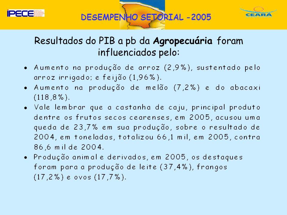 D Resultados do PIB a pb da Agropecuária foram influenciados pelo: DESEMPENHO SETORIAL -2005