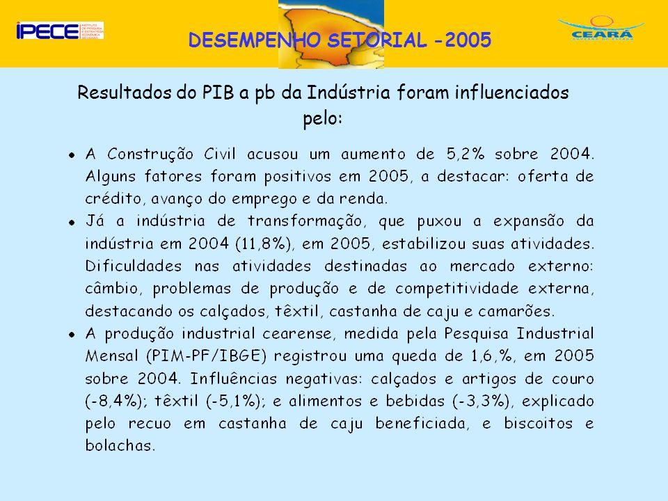 D Resultados do PIB a pb da Indústria foram influenciados pelo: DESEMPENHO SETORIAL -2005
