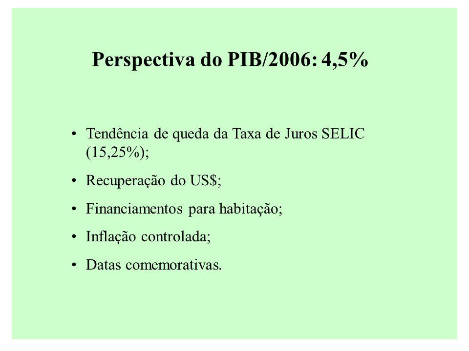 Perspectiva do PIB/2006: 4,5% Tendência de queda da Taxa de Juros SELIC (15,25%); Recuperação do US$; Financiamentos para habitação; Inflação controla