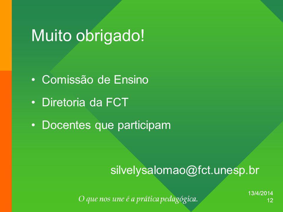 13/4/2014 O que nos une é a prática pedagógica. 12 Muito obrigado! Comissão de Ensino Diretoria da FCT Docentes que participam silvelysalomao@fct.unes